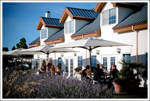 Memorial Day Weekend Open House @ Anne Amie Vineyards | Carlton | Oregon | United States